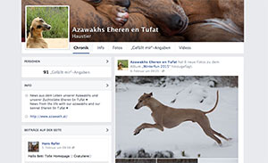 NEU - Facebookseite / NEW - Facebook site